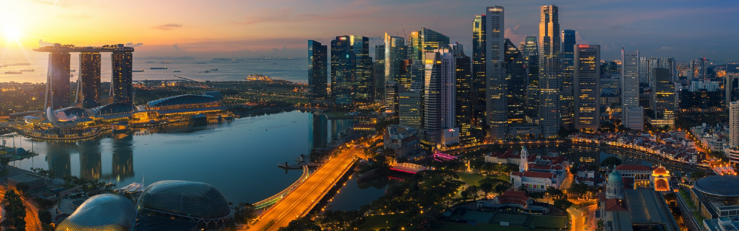 Singapore Public Sector Outcomes Review 2020