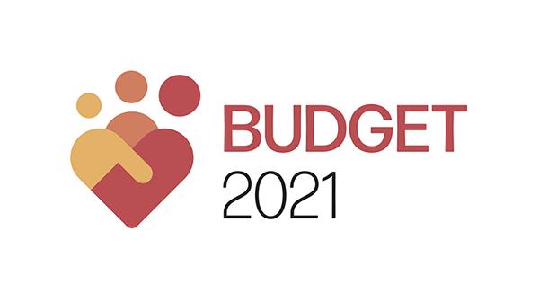 budget 2021 - photo #28